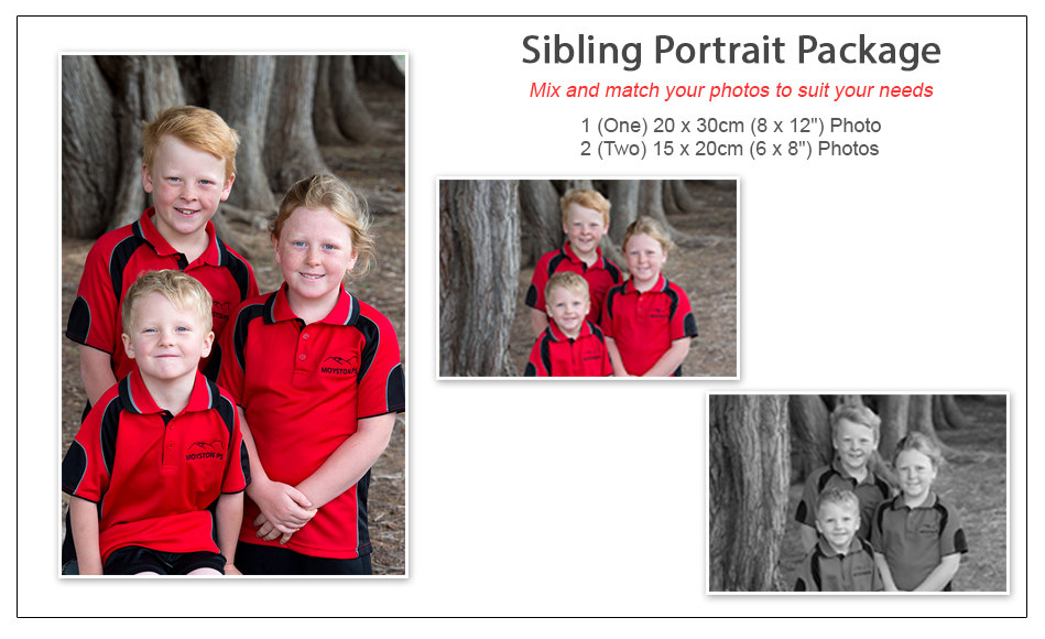 Family Portrait Package